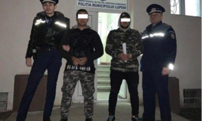 arestati lupeni talharie calificata_feb 2019