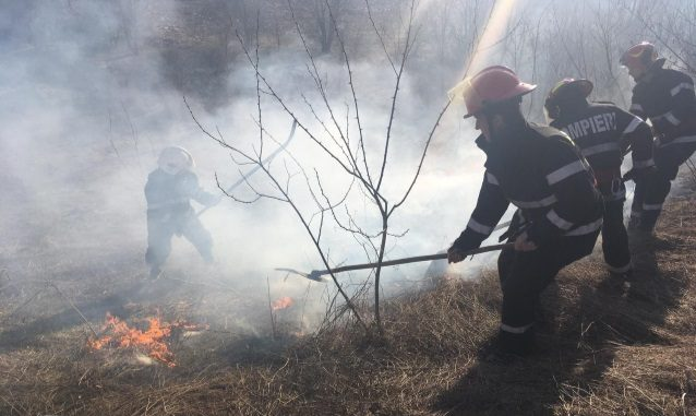 Incendii vegetatie uscata