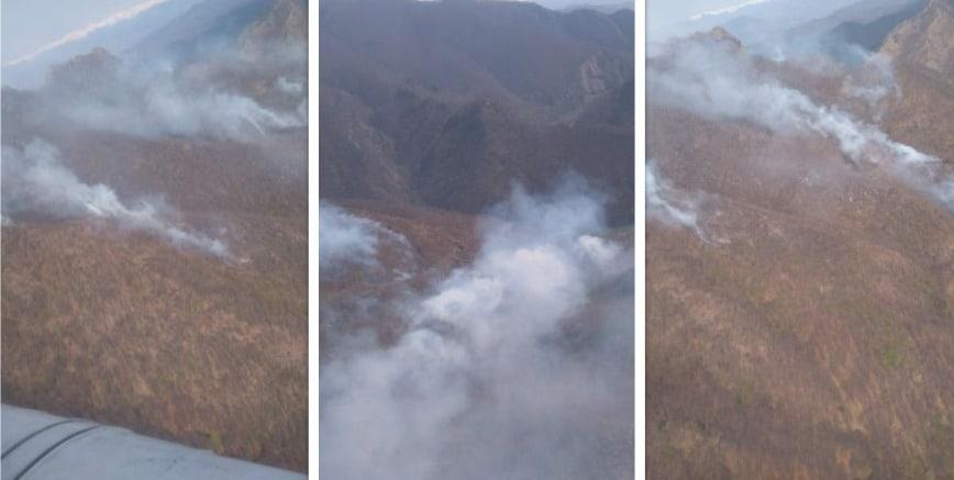 incendiu munti valea oltului negoiu