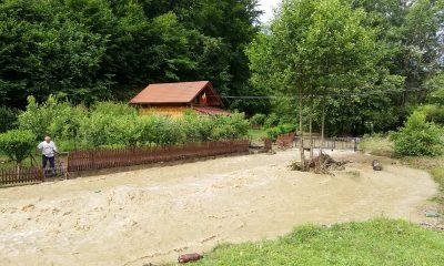 inundatii-lunca-ampoitei
