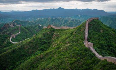 zid chinezesc