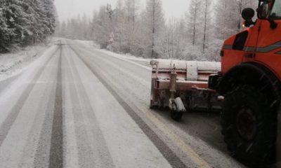 ninge suceava drumari zapada