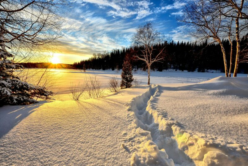 iarna sursa foto pixabay.com